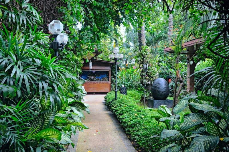 Tropisk trädgård royaltyfria bilder