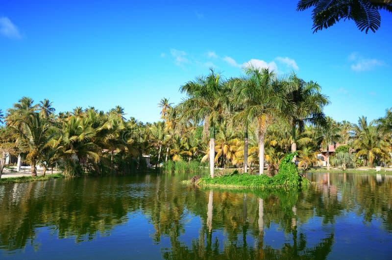 Tropisk trädgård med den härliga sjön i den lyxiga semesterorten, dominikan arkivbilder