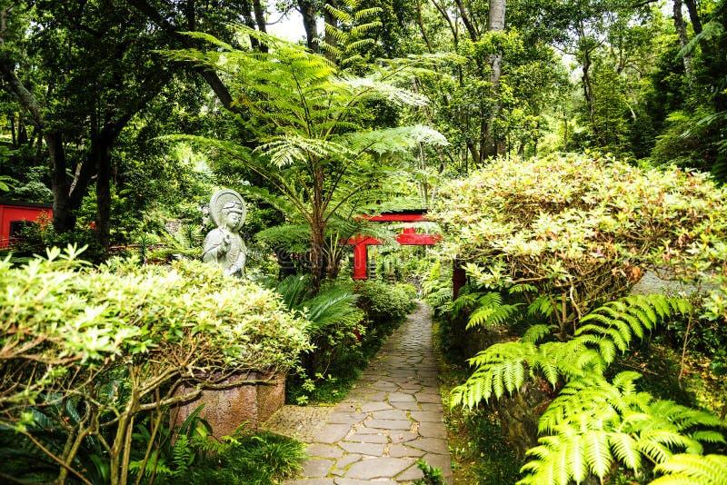 Tropisk trädgård på Monte ovanför den Funchal madeiran royaltyfria foton