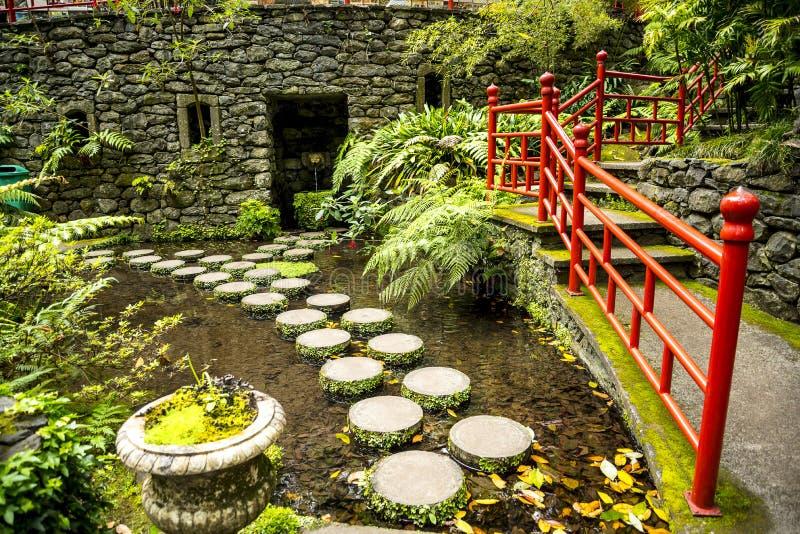Tropisk trädgård på Monte ovanför den Funchal madeiran royaltyfri foto