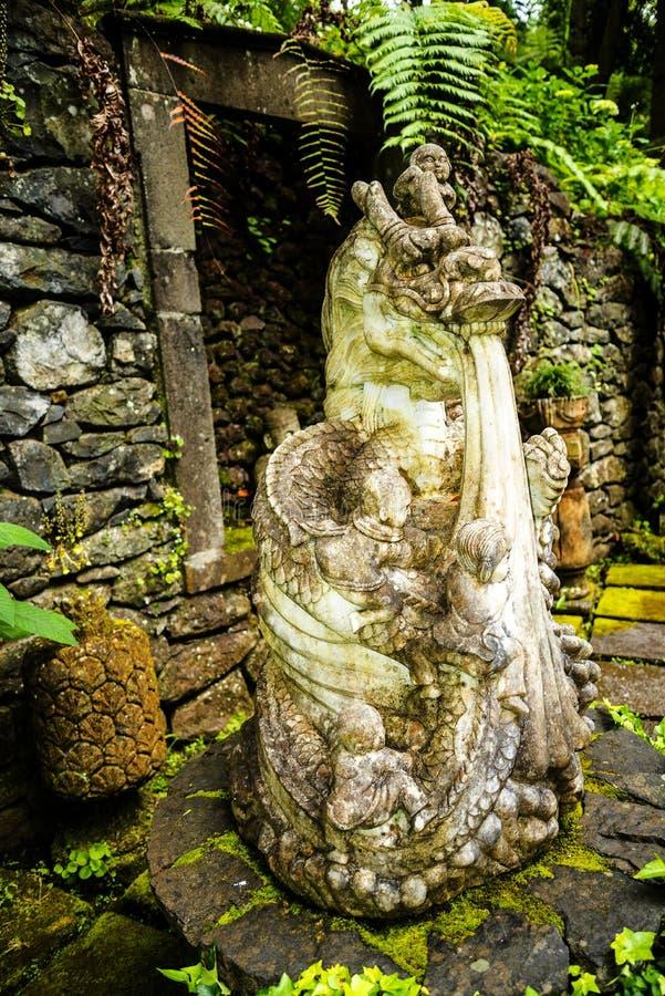 Tropisk trädgård på Monte ovanför den Funchal madeiran royaltyfri fotografi