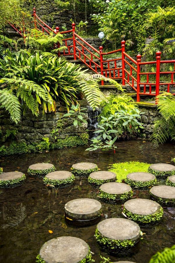 Tropisk trädgård på Monte ovanför den Funchal madeiran arkivfoton