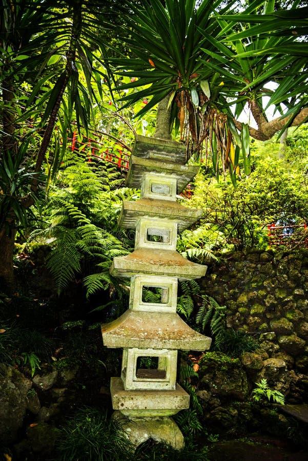 Tropisk trädgård på Monte ovanför den Funchal madeiran royaltyfri bild