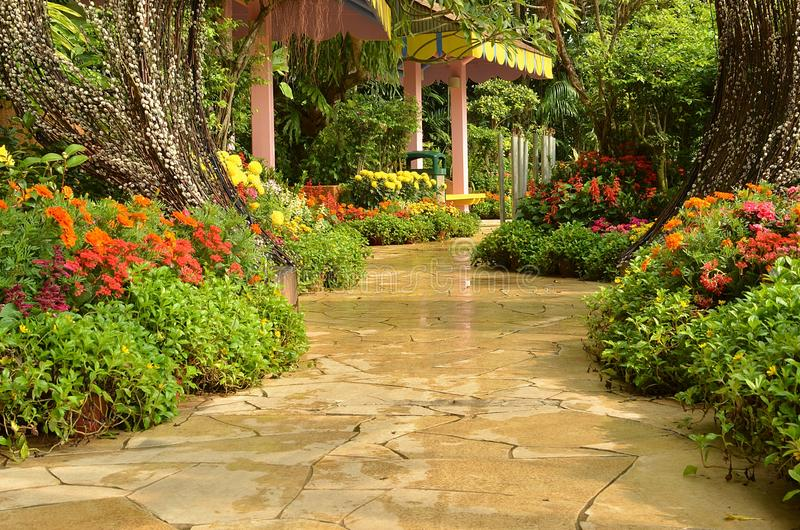 tropisk trädgårds- bana royaltyfri bild