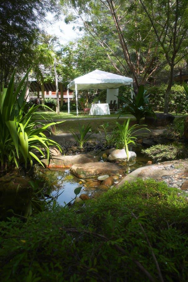tropisk trädgårds- semesterort royaltyfri fotografi