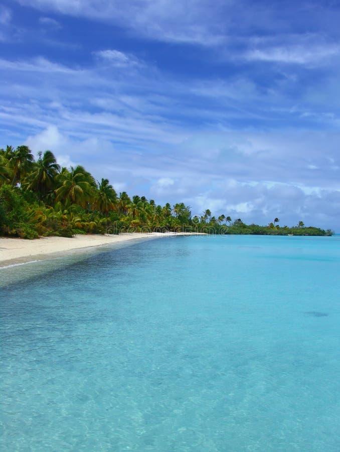 Tropisk Udd Arkivfoton