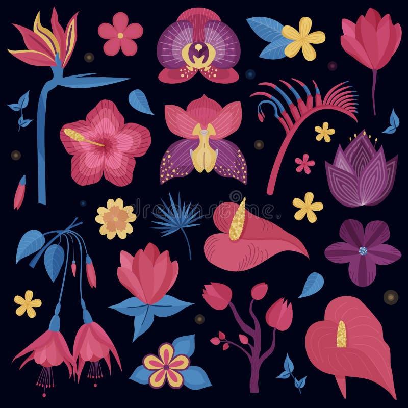 Tropisk uppsättning för nattblommor royaltyfri illustrationer