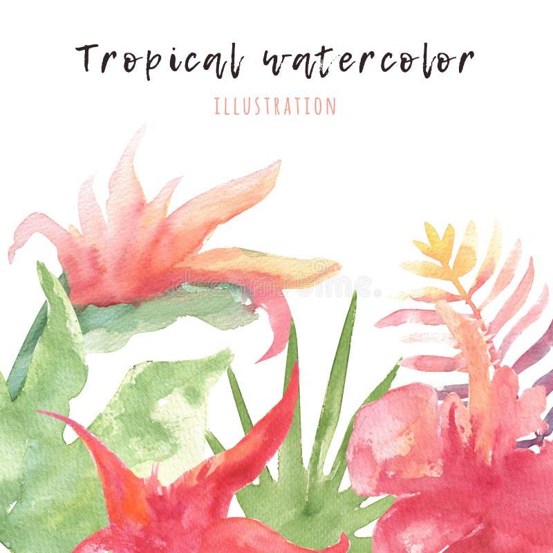 Tropisk vattenfärgnanner med ljusa sidor och blommor Sommargarnering för hälsningkort, exotisk illustration vektor illustrationer