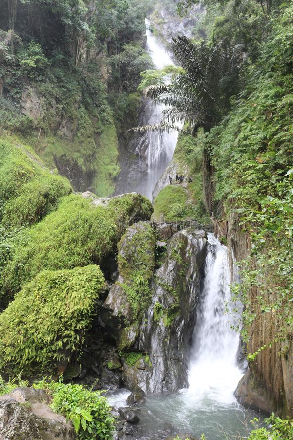 Tropisk vattenfall i rainforesten royaltyfri fotografi