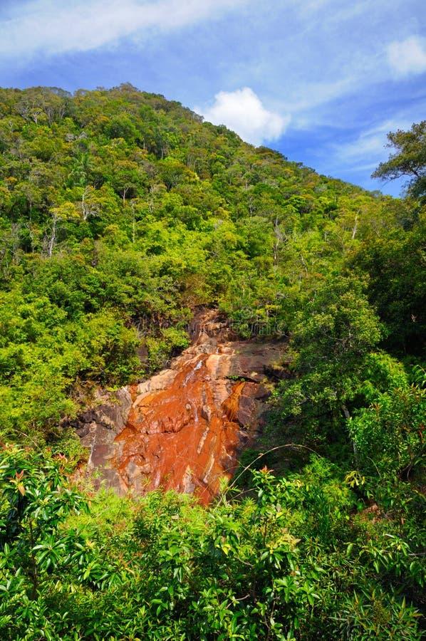 Tropisk vattenfall på berget som täckas med rainforesten på den Koh Chang ön, Thailand royaltyfria foton