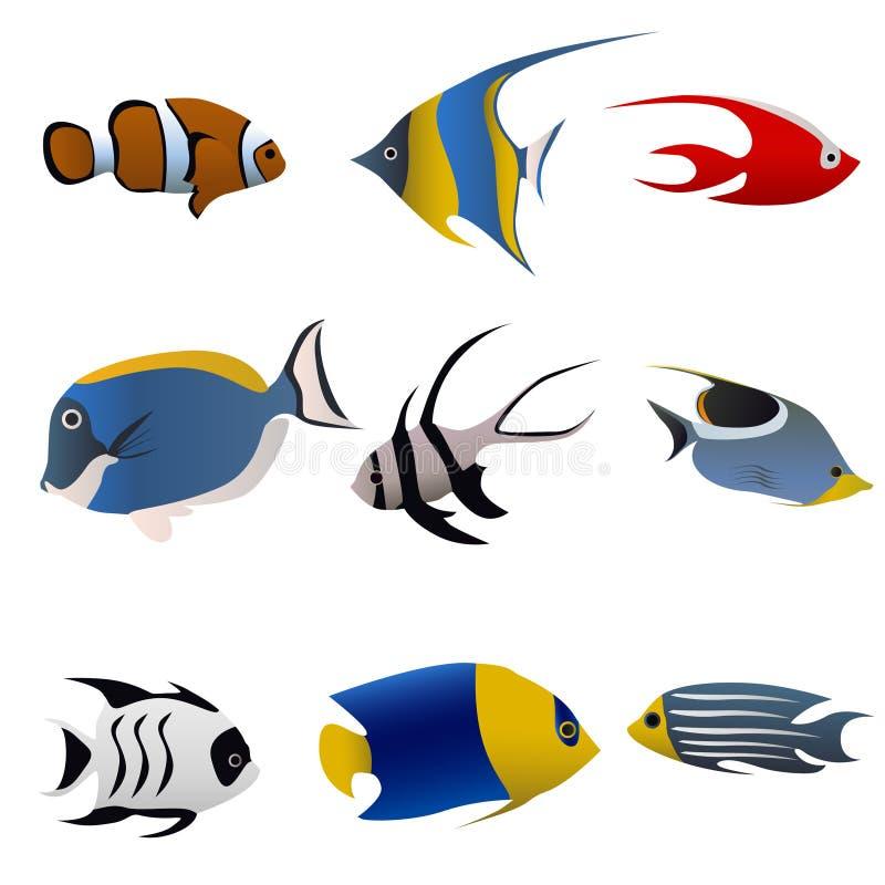 tropisk vektor för fisk stock illustrationer