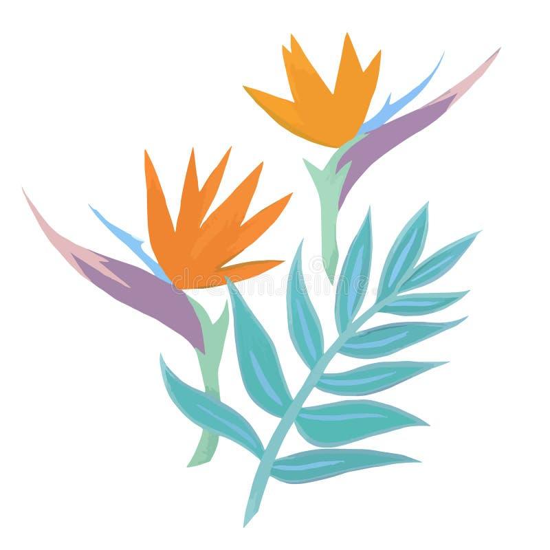 Tropisk vektorsammansättning för vattenfärg stock illustrationer