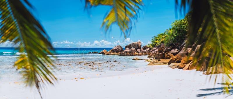 Tropisk vit sandstrand på paradisön Exotiskt begrepp för bakgrund för ferie för avkoppling för lopp för sommarsemester arkivfoton