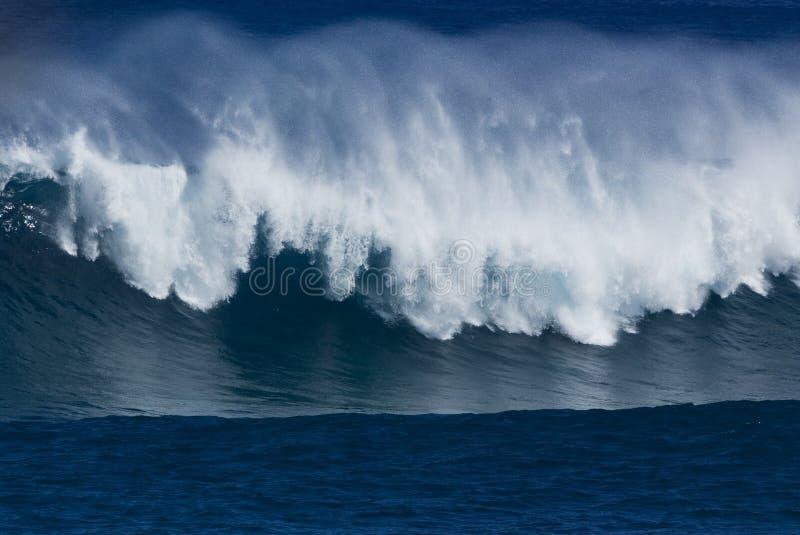 tropisk wave royaltyfri fotografi