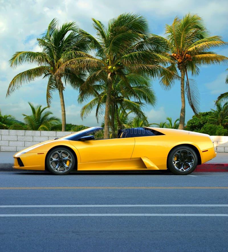 tropisk yellow för bilö arkivfoto