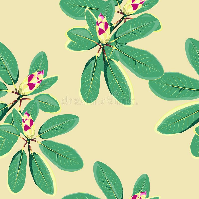 Tropiska blommor, djungelsidor, paradisblomma Blom- modellbakgrund för härlig sömlös vektor, exotiskt tryck royaltyfri illustrationer