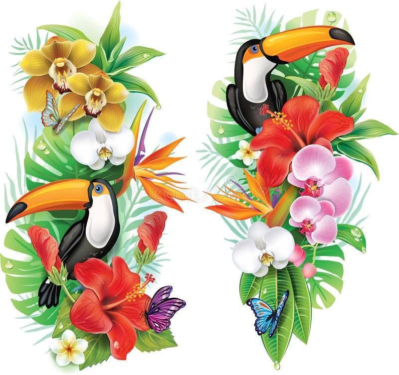 Tropiska blommor och tukan vektor illustrationer