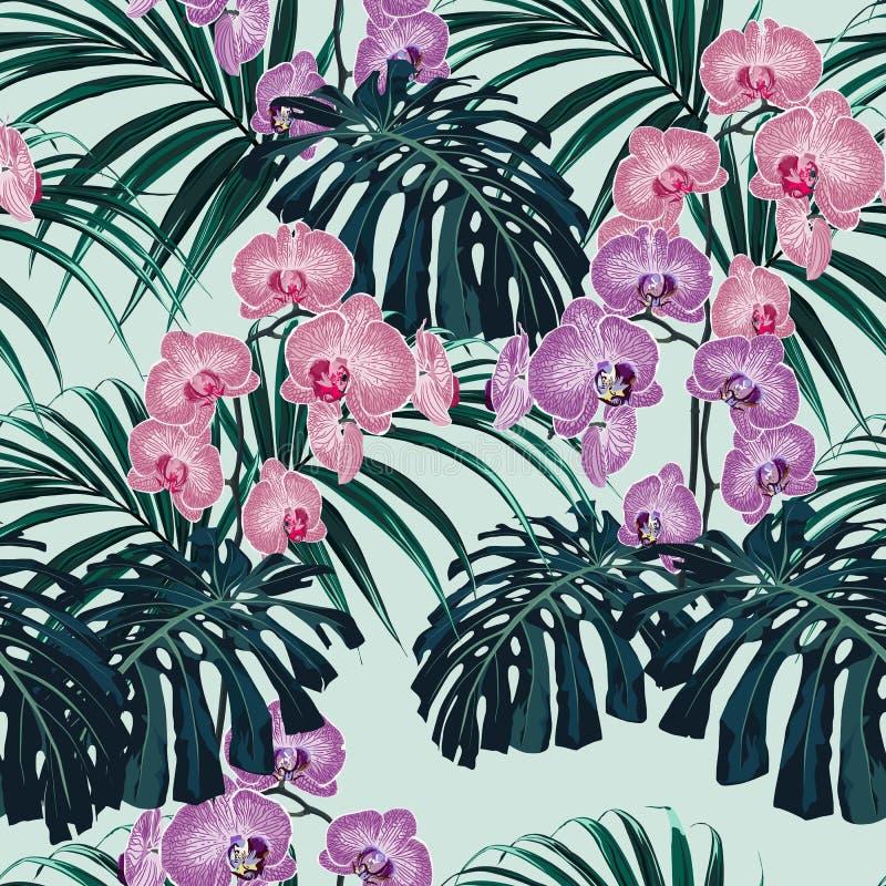 Tropiska exotiska växter sömlös modell, monster, palmblad och rosa violetta orkidéblommor vektor illustrationer