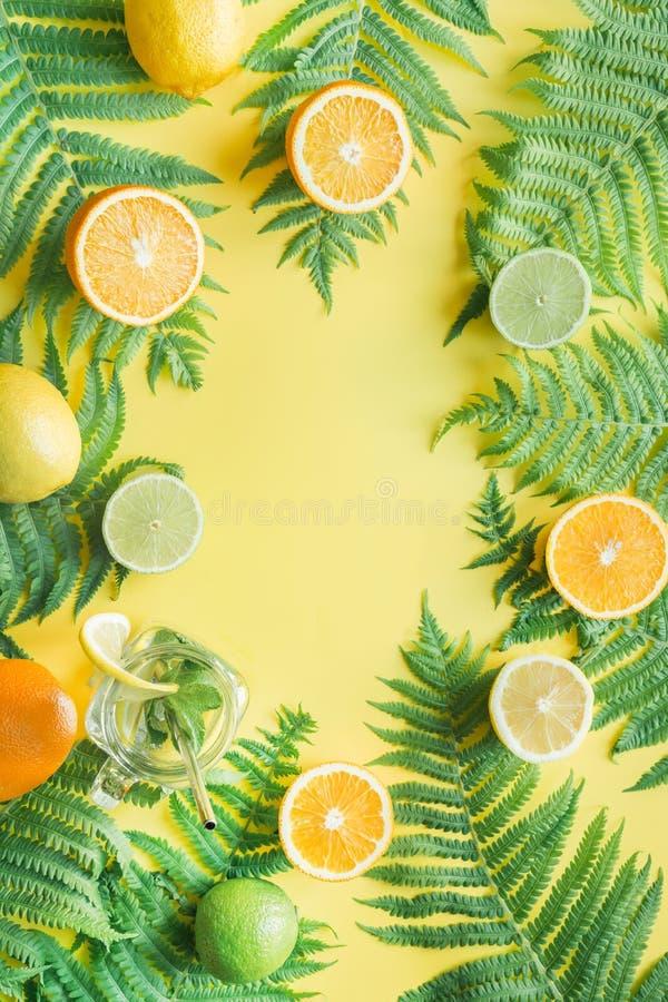 Tropiska friuts, apelsin, citron, limefrukt på guling och ormbunkesidor Top besk?dar sommar f?r sn?ckskal f?r sand f?r bakgrundsb arkivfoto