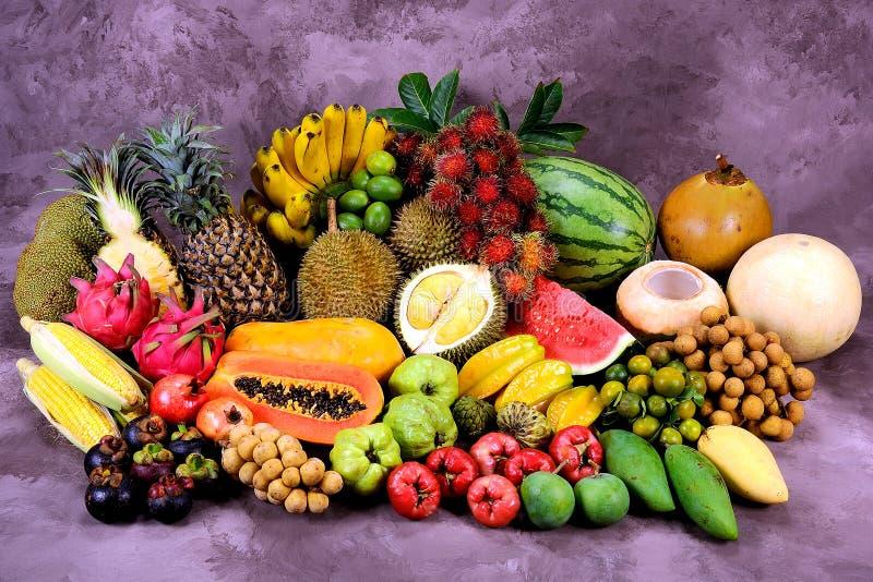 Tropiska frukter royaltyfri bild