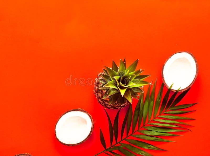Tropiska frukter i vide- korg på korallbakgrund Lekmanna- lägenhet, bästa sikt closeup royaltyfria foton