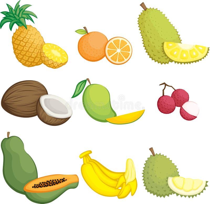 Tropiska fruktsymboler royaltyfri illustrationer