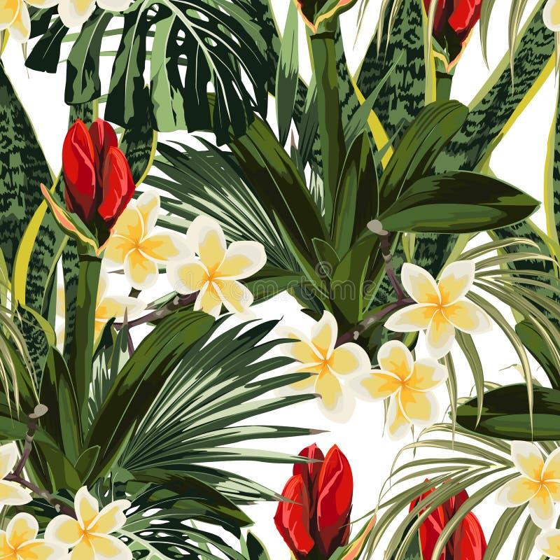 Tropiska liljor slår ut, den sömlösa modellen för plumeriablommor med ljust - gröna sidor på vit bakgrund royaltyfri illustrationer
