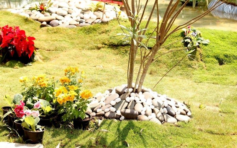 Tropiska mini- trädgårdar arkivfoto