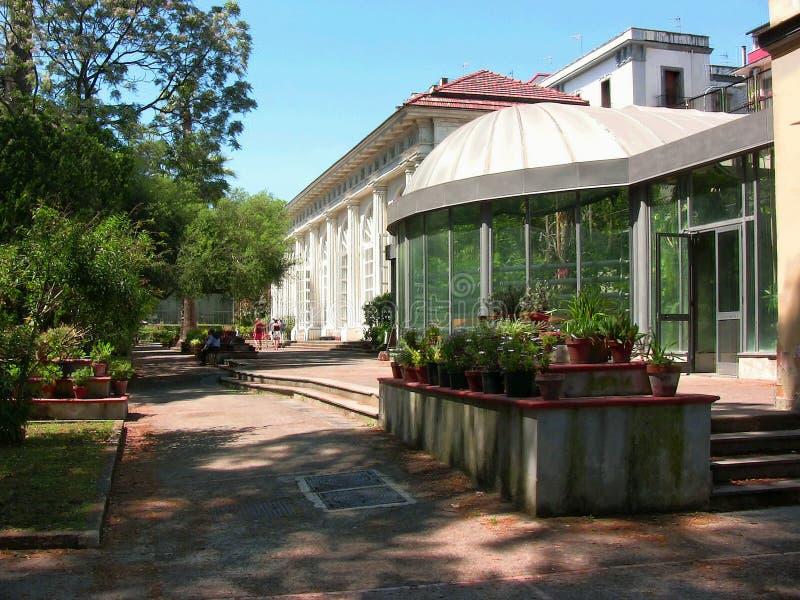 Tropiska och Merola växthus royaltyfri foto