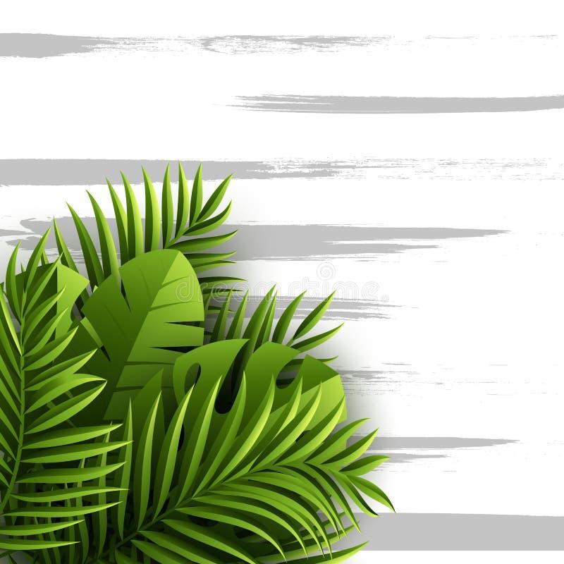 Tropiska palmblad för exotisk djungel Blom- bakgrund för sommar med grungetextur, vektorillustration royaltyfri illustrationer