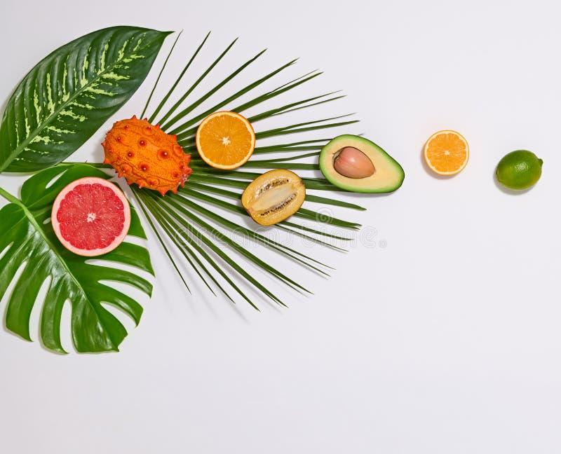 Tropiska palmblad och nya frukter Sommaruppsättning royaltyfri fotografi