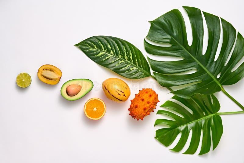 Tropiska palmblad och nya frukter Sommaruppsättning arkivfoton