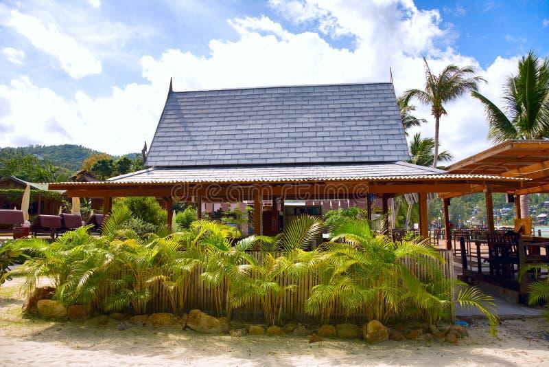 tropiska palmträd för strandkokosnöthus royaltyfri foto