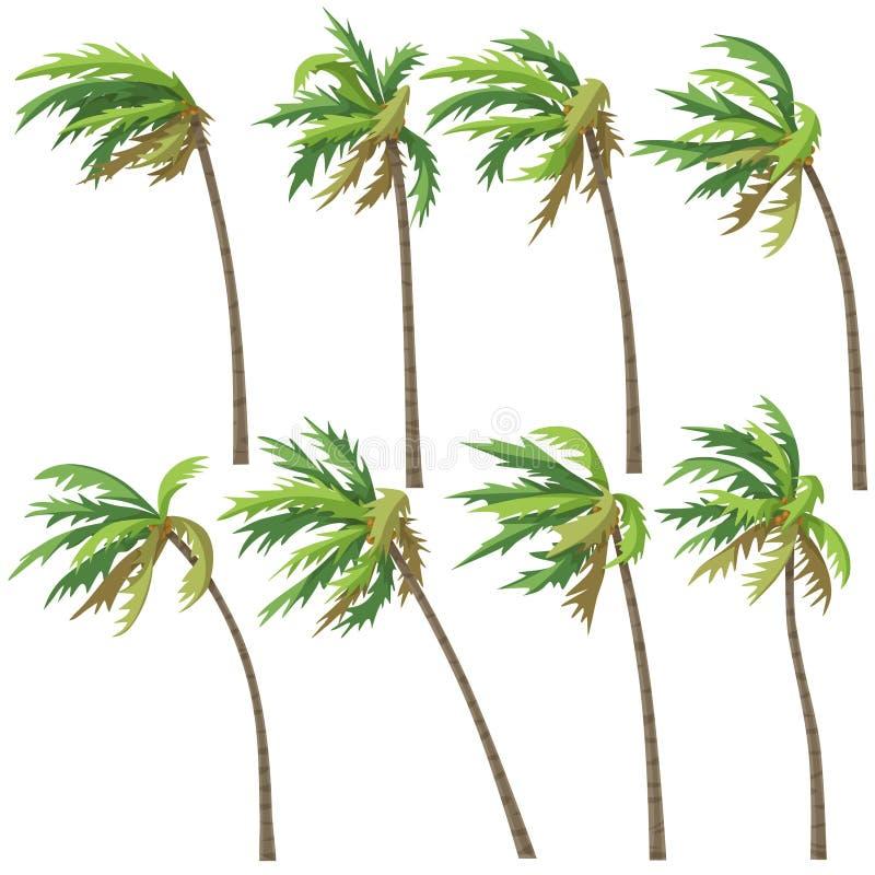 Tropiska palmträd på vindstorm royaltyfri illustrationer