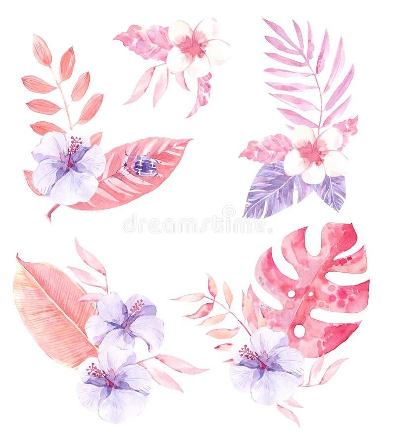 Tropiska sammansättningar för vattenfärg med blommor och sidor stock illustrationer