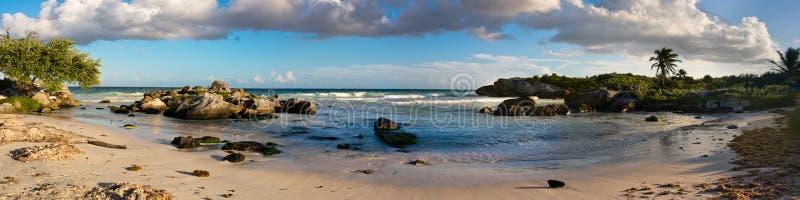 Tropiska Sandy Beach på det karibiska havet mexico royaltyfri fotografi
