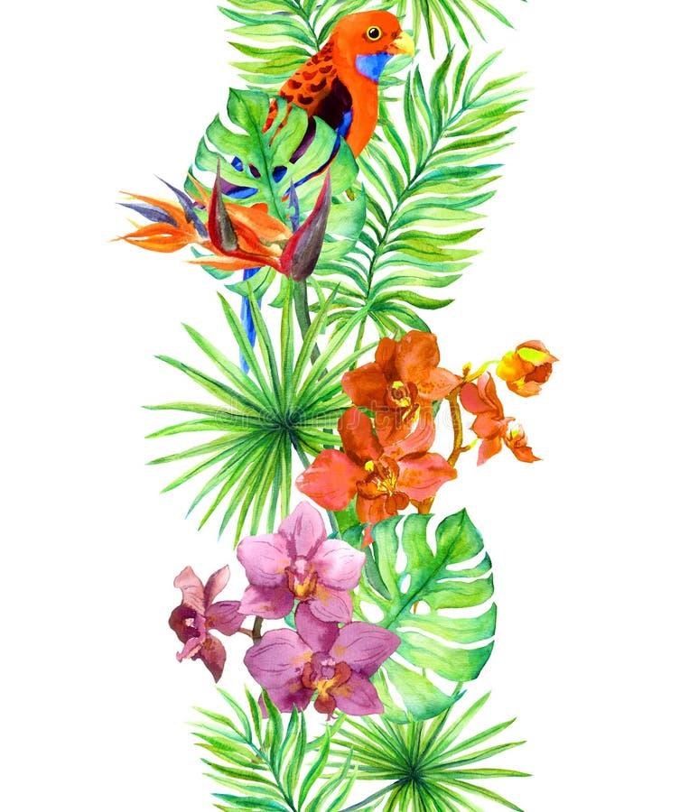 Tropiska sidor, den exotiska papegojafågeln, orkidé blommar Upprepa gränsen Ram för vattenfärg royaltyfri illustrationer
