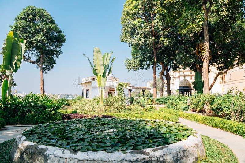Tropiska träd parkerar nära Pichola sjön på Udaipur, Indien fotografering för bildbyråer