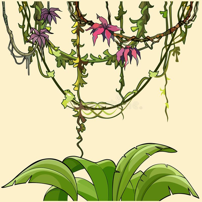 Tropiska växter buske och lianer för tecknad film med blommor vektor illustrationer