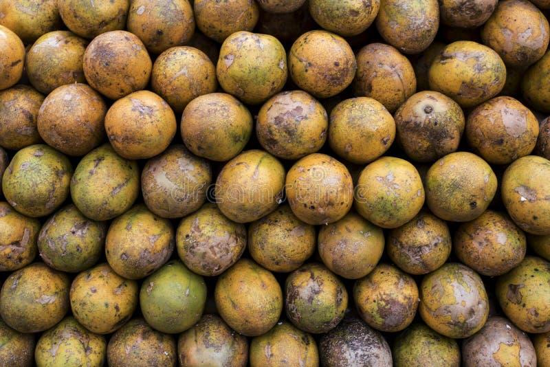 Tropiska vietnamesfrukter arkivfoto