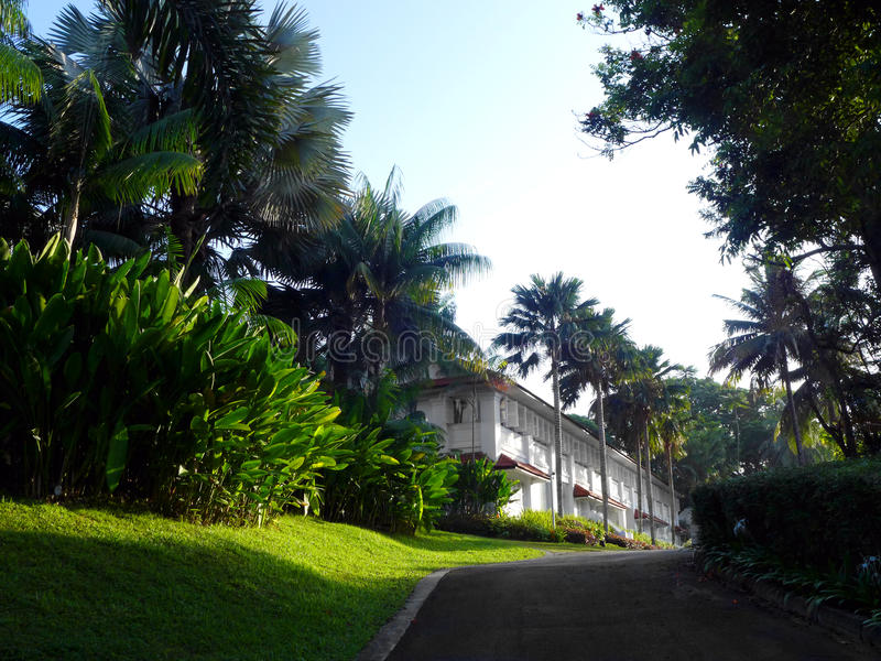 Tropiskt antikt kolonialt hus med att landskap royaltyfria foton