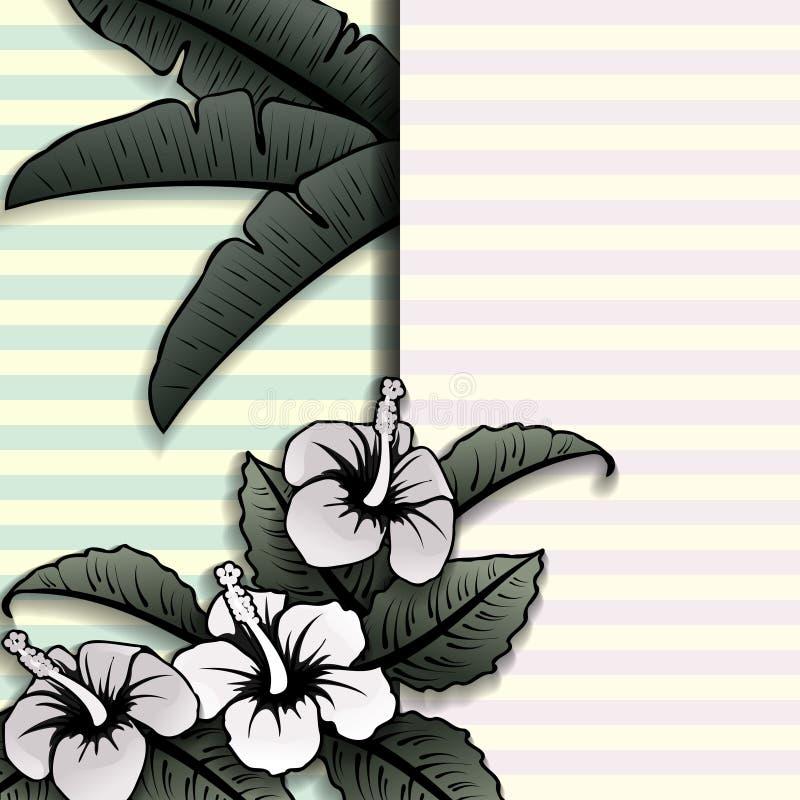 Tropiskt baner för tappningstil med hibiskusen royaltyfri illustrationer