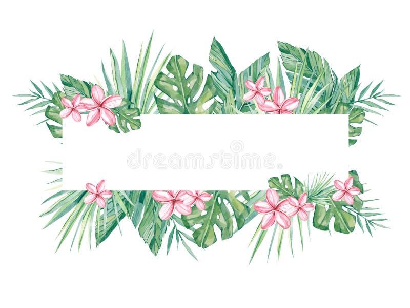 Tropiskt blom- för vattenfärgbaner som isoleras på vit bakgrund Illustration f?r designbr?llopinbjudningar, h?lsningkort royaltyfri illustrationer