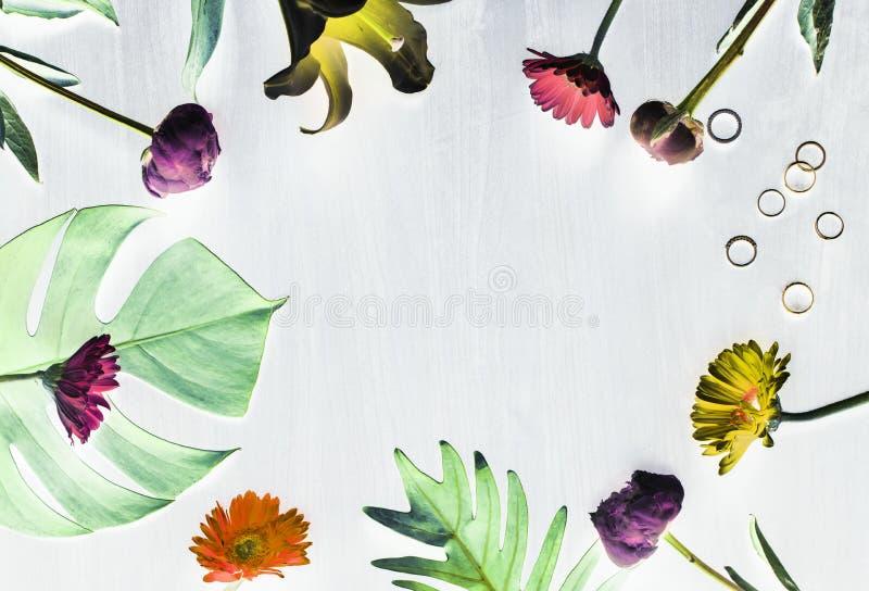 Tropiskt blomma- och sidadesignutrymme stock illustrationer