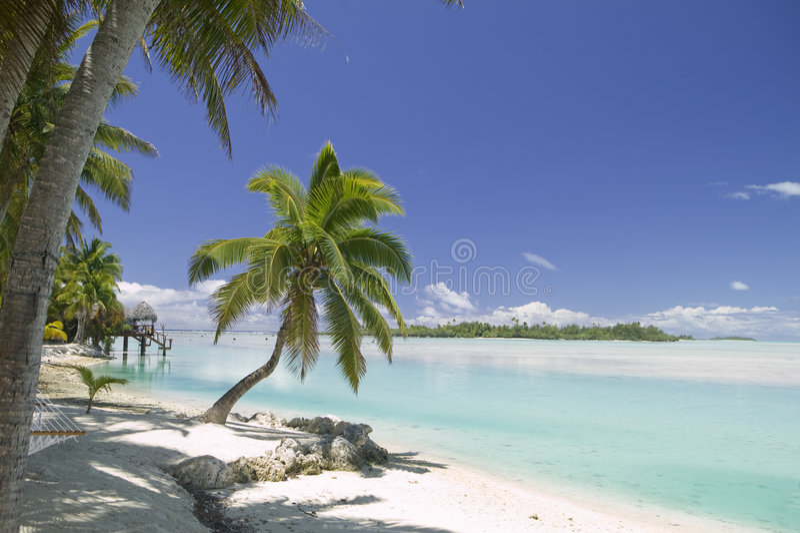 tropiskt dröm- paradis för strand royaltyfri foto