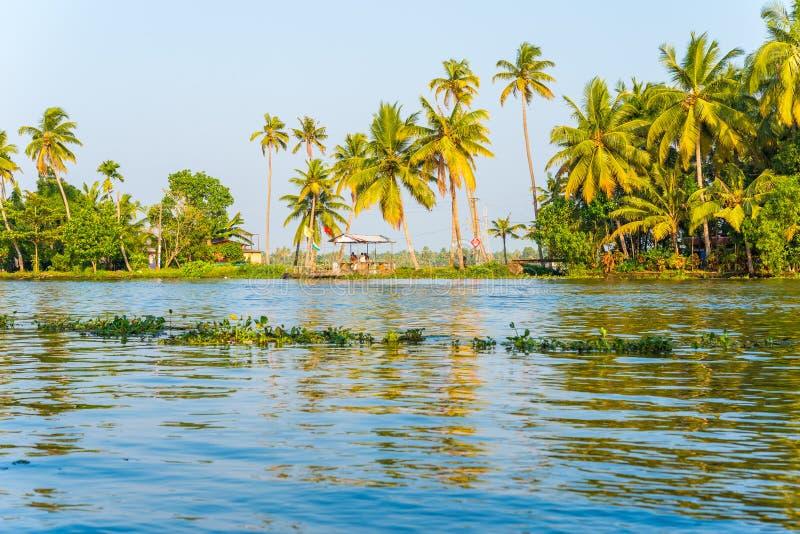 Tropiskt flodlandskap i Alleppey, Indien arkivbilder