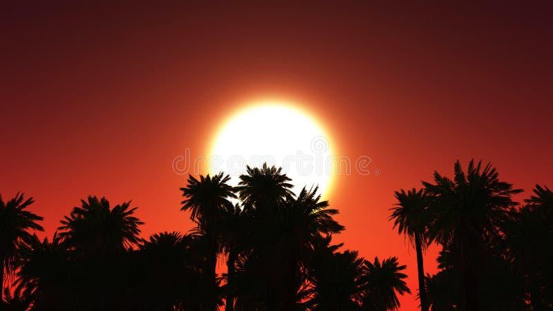 tropiskt landskap 3D med palmträd mot solnedgånghimmel royaltyfri illustrationer