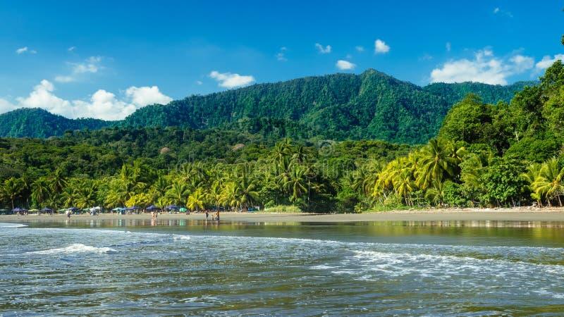 Tropiskt landskap, skönhet i natur arkivbild