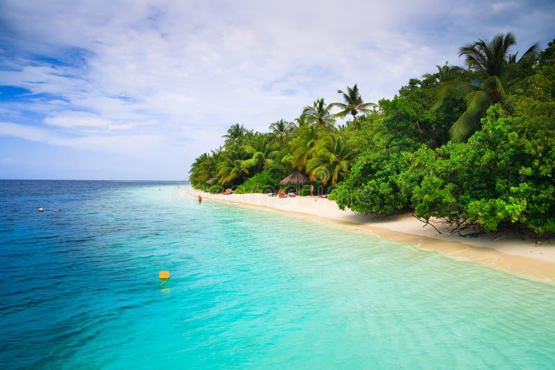 tropiskt maldives paradis arkivfoto