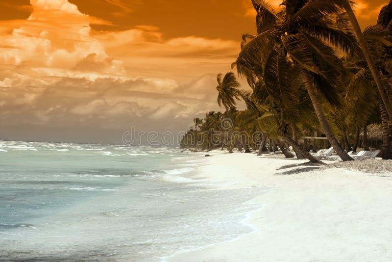 tropiskt paradis royaltyfria foton